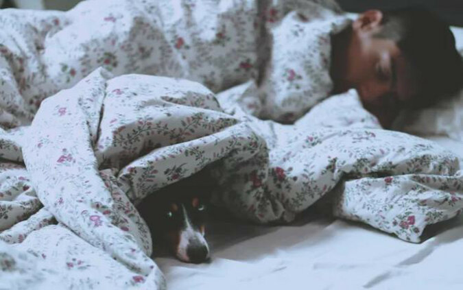 Naukowcy uważają, że pozwolenie psu spać w łóżku jest dobre dla zdrowia