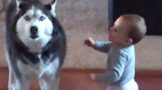 Mama przyłapała swoje dziecko na rozmowie z psem… musicie to usłyszeć