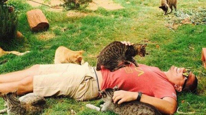 Ludzie z całego świata przyjeżdżają do schroniska dla kotów na Hawajach, bo mieszka tu prawie 500 kotów