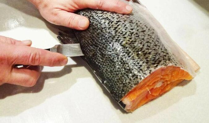 Jak prawidłowo wypatroszyć i solić ryby