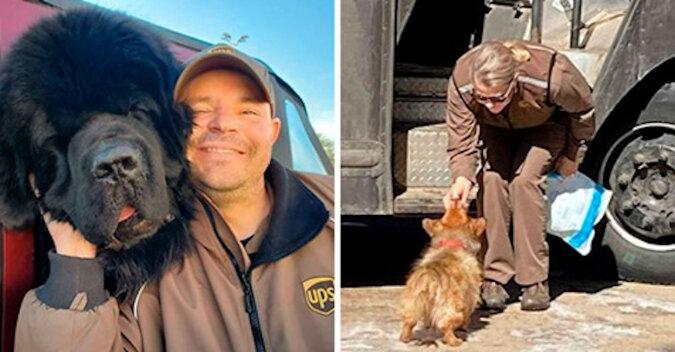 Kudłate łobuzy spotykają kurierów: projekt UPS Dogs nabiera tempa