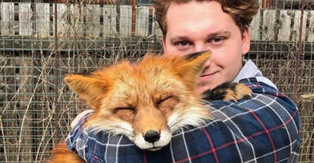 Mężczyzna nie tylko uratował lisa przed pewną śmiercią, ale także stał się dla niego kochającym właścicielem