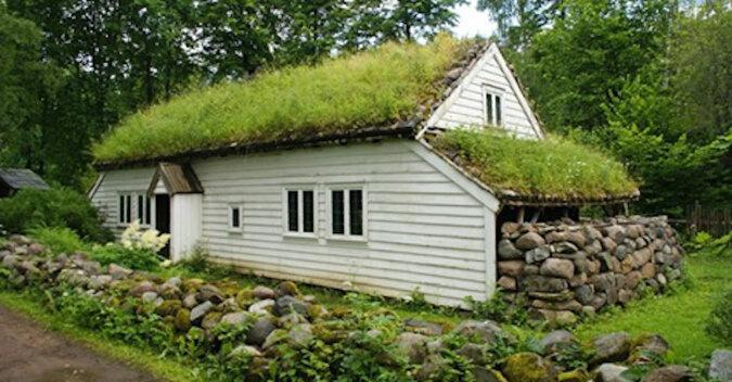 Dlaczego na dachach skandynawskich domów rośnie trawa