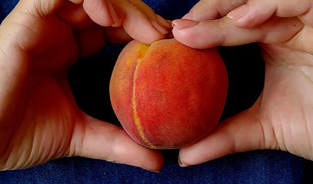 Pokażę sztuczkę, jak można podzielić brzoskwinię na małe plasterki za 30 sekund i oddzielić pestkę