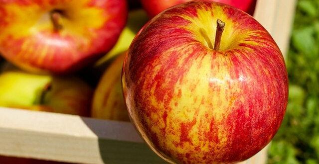 Naukowcy nazwali najzdrowszą część jabłka
