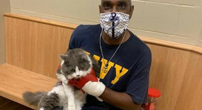 Mężczyzna przyszedł do schroniska po nowego zwierzaka i spotkał swojego zaginionego kota