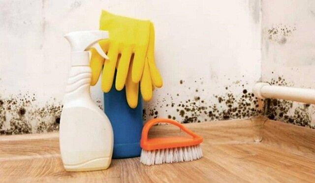 Niechemiczne sposoby na pozbycie się pleśni w domu