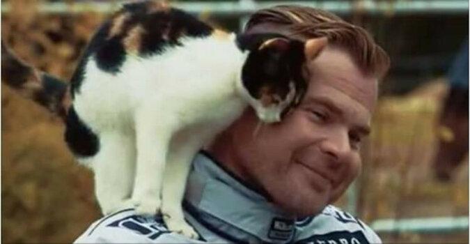 Przyjazna kotka pojawiła się w wywiadzie i stała się gwiazdą