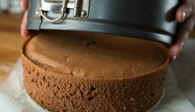 Idealny czekoladowy biszkopt. Wspaniała podstawa na większość różnych ciast