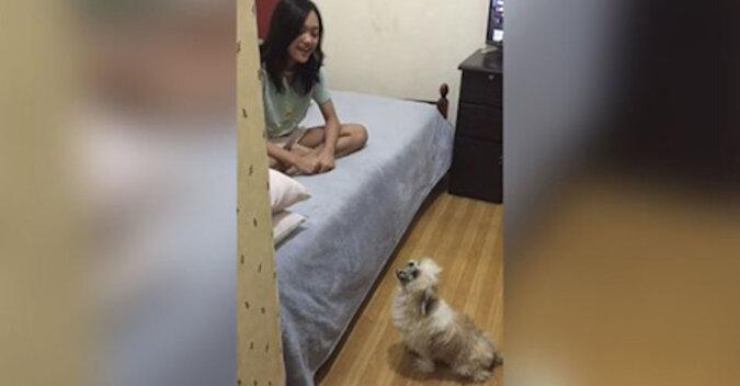 Pies śpiewa z dziewczynką, kopiując noty. Zabawne wideo