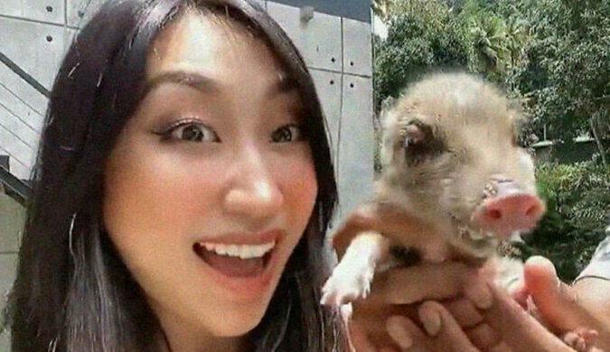 7 zdjęć osieroconej świnki, która została najlepszym przyjacielem czterech psów