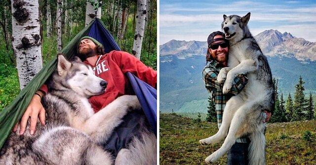 Pies Loki zawsze podróżuje ze swoim właścicielem Kellym. Mężczyzna krytykuje tych, którzy zamykają psa w mieszkaniu