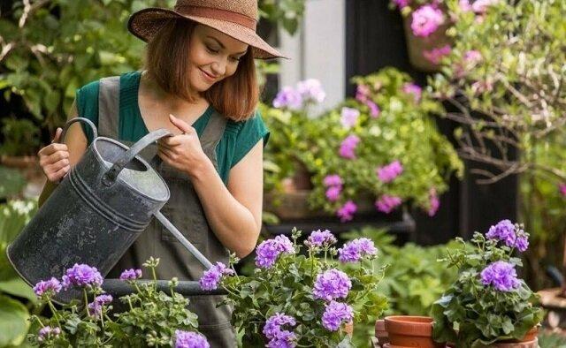 Czym nawozić kwiaty w ogrodzie, aby rosły szybciej?