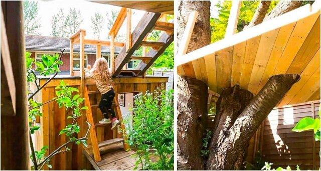 Troskliwy ojciec zbudował domek na drzewie dla swoich córek. Fantastyczne