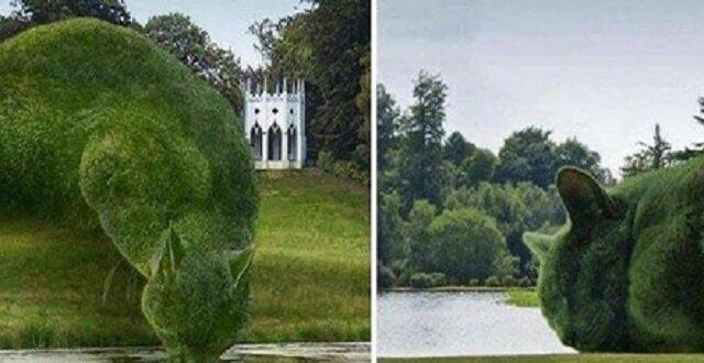 Śliczne krzewy: artysta zamienia zwykłe krzaki w urocze koty
