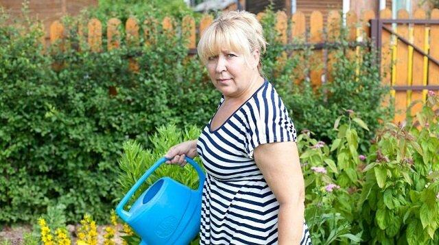 Szkodniki znikną: jak używać mydła z dziegciu brzozowego w ogrodzie