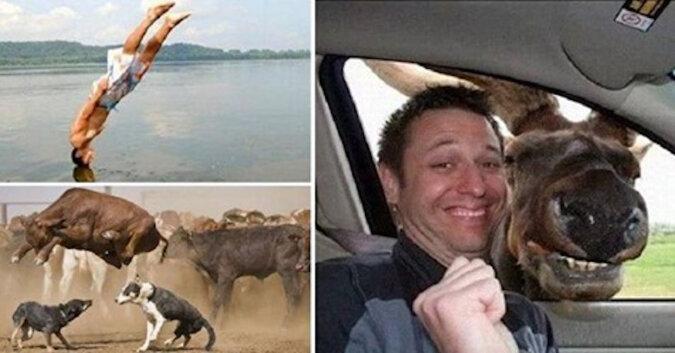 Śmieszne zdjęcia zrobione w odpowiednim momencie