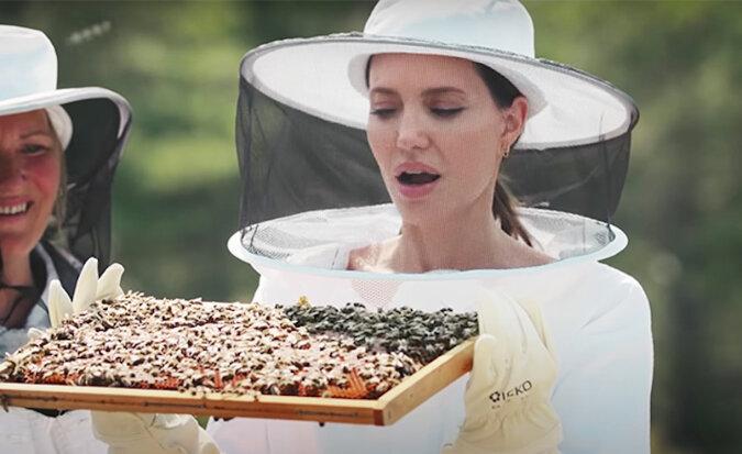 Angelina Jolie w stroju pszczelarza nieustraszenie pomaga ratować pszczoły w Prowansji: wideo