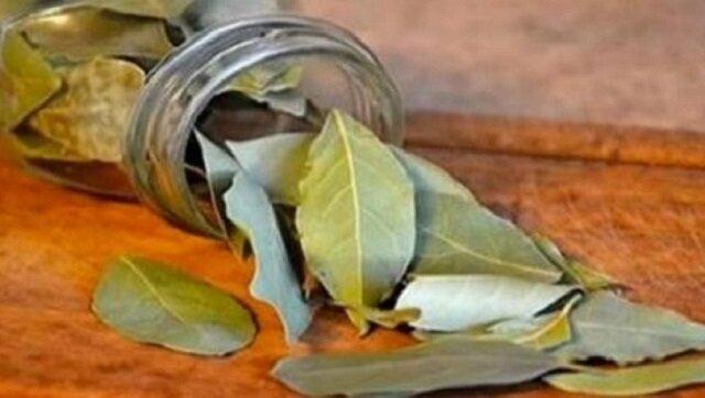 Spal w domu liście laurowe, a już po 10 minutach zobaczysz, co się stanie