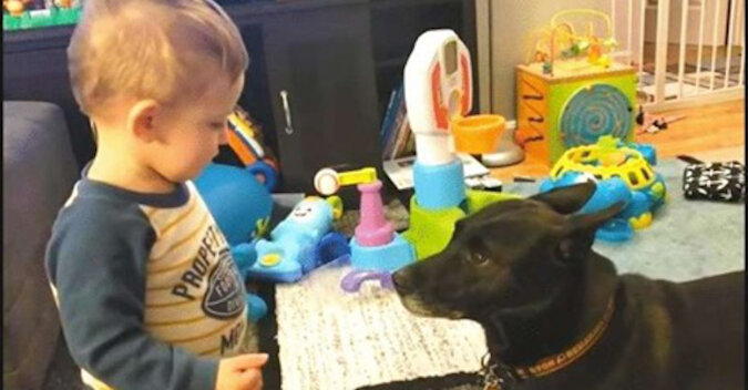 Dialog między chłopcem a psem: z pewnością istnieje między nimi niewidzialna więź