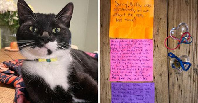 """Kot został """"listonoszem"""" i winowajcą przyjaźni sąsiadów"""