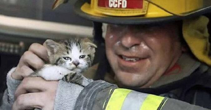 Epickie ujęcia strażaków ratujących koty z pożarów