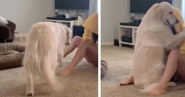 Kobieta opowiada, jak jej pies wspiera ją, gdy ona ma napady lęku. Wideo