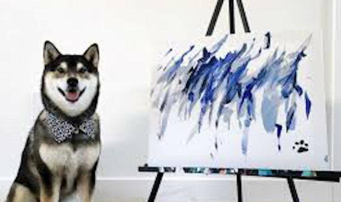 """Pies z Kanady """"zbił fortunę"""" malując obrazy. Wideo"""