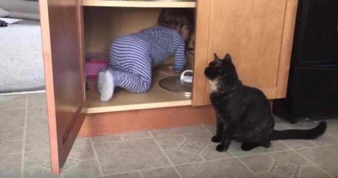 Zobacz co tu się wydarzyło z kotem i dzieckiem w roli głównej