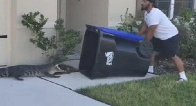 Weteran armii amerykańskiej złapał dużego aligatora za pomocą dużego kosza na śmieci, aby ochronić dzieci