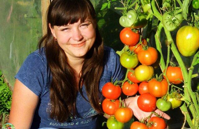 Szybka metoda podwiązywania pomidorów gruntowych bez patyczków – zajęło mi to jakieś 10 minut