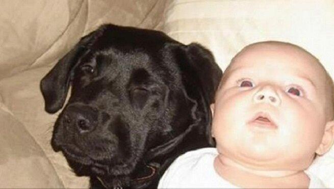 Siostra ostrzegała ją, żeby nie kupowała psa, jeśli będzie mieć dziecko. 10 lat później żałuje, że to powiedziała