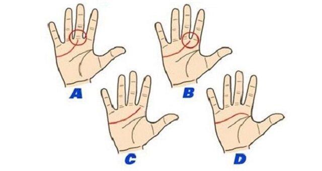 Czytając z dłoni możesz się dowiedzieć, kim jesteś. Odszukaj linię serca i przeczytaj, co o tobie mówi