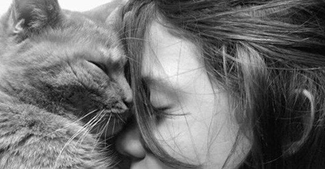 Do jakich ludzi przyciągają się koty i komu ufają?