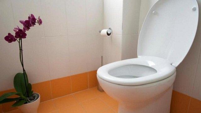 Nie uwierzysz, co się stanie, kiedy wrzucisz torebkę herbaty do toalety