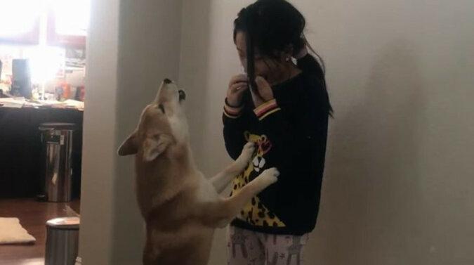 Idealny duet: wspólny występ dziewczyny i psa oczarował Internet. Wideo