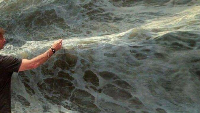 """""""Żywe morze"""" - Ran Ortner. Niesamowite zdjęcia"""
