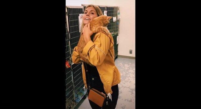 Dziewczyna przyszła do schroniska, aby wybrać kotkę, nikt nie spodziewał się, co się tam wydarzyło. Wideo