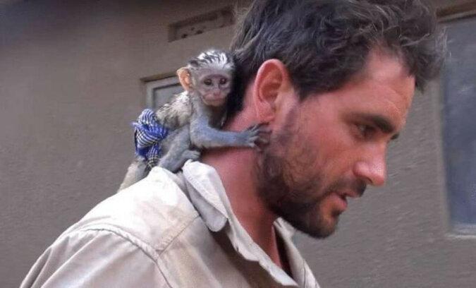 Historia małej małpki, która kocha mężczyznę, który uratował ją w pożarze