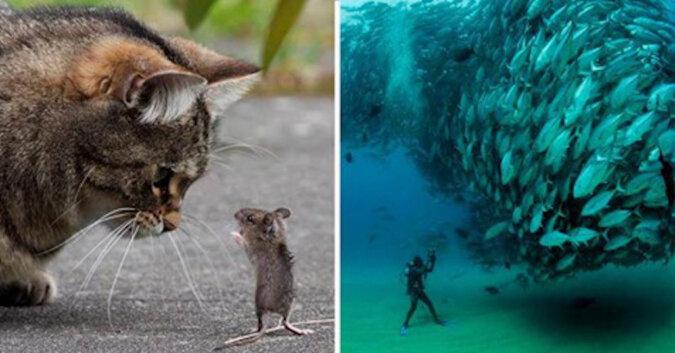 20 zdjęć, które zadziwią Cię tak dokładnym czasem wykonania