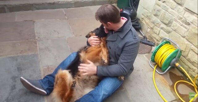 Pies popłakał się ze szczęścia, kiedy spotkał swego najlepszego przyjaciela