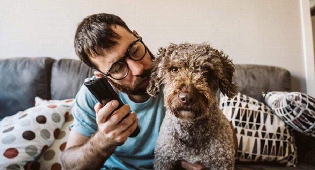 Reakcje psów na oglądanie telewizji: śmieszne nagrania