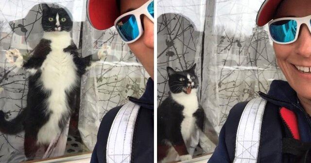 Listonosz sfilmowała kota, który rozpaczliwie broni domu
