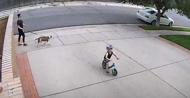 Reakcja mężczyzny na fakt, że czyjeś dziecko jeździ w pobliżu jego garażu, zaskoczyło sieci społecznościowe