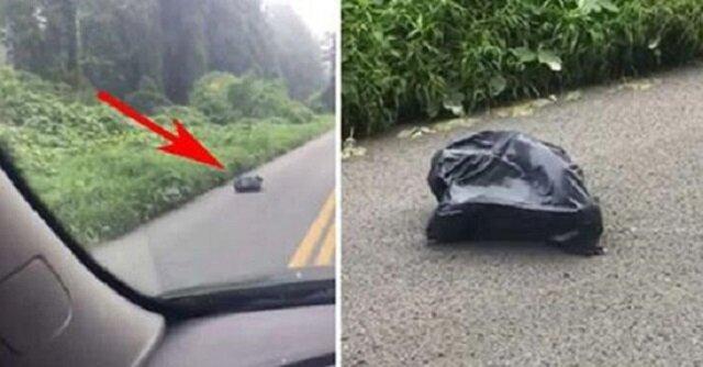 Kobieta gwałtownie zahamowała i ominęła torbę leżącą na drodze. Gdy przyjrzała się jej bliżej, przeszły ją dreszcze
