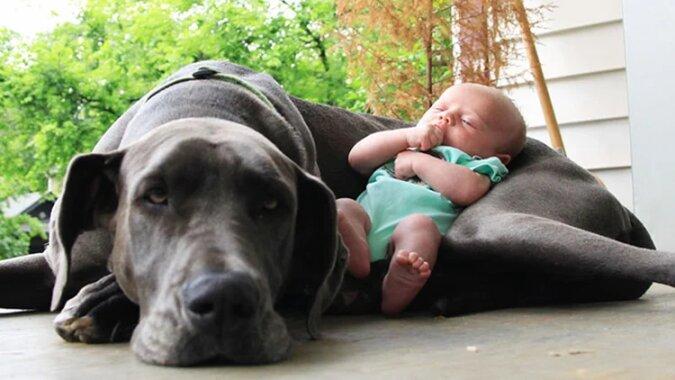 10 psów tulących się z dziećmi, które są po prostu zbyt urocze. Zobacz słodkie zdjęcia