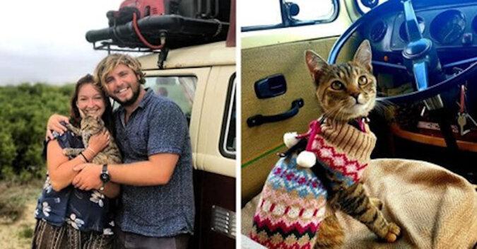 Para pozostała w Meksyku przez rok, ponieważ nie mogli zostawić uratowanego kota