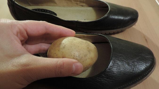 Po co wkładać obrane ziemniaki do skórzanego obuwia i zostawiać na noc? Świetny patent, który warto znać
