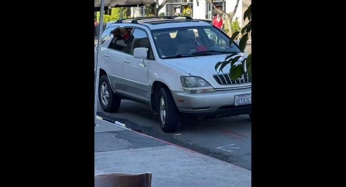 Psy były zmęczone czekaniem w samochodzie na właścicielkę, która wyszła na zakupy i postanowiły dać jej lekcję. Wideo