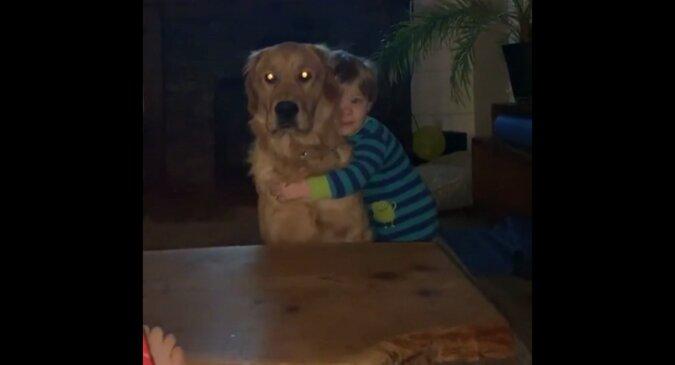 Kochający pies zawsze odwzajemnia przytulanie dziecka. Wzruszający film